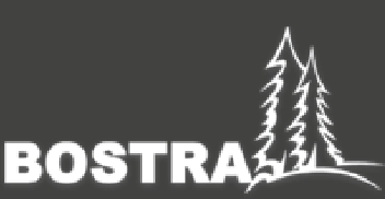Bostra
